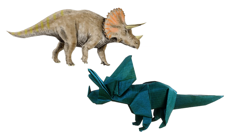 triceratops cover